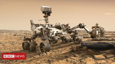 Photo of Nasa Mars rover: How Perseverance will hunt for signs of past life