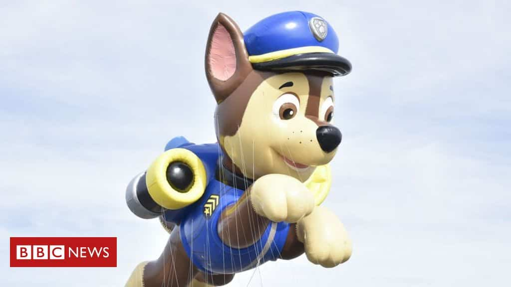 paw-patrol:-cartoon-not-cancelled-despite-white-house-comments