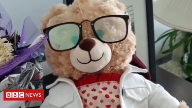 Photo of Mara Soriano: Stolen teddy bear with dying mum's message found