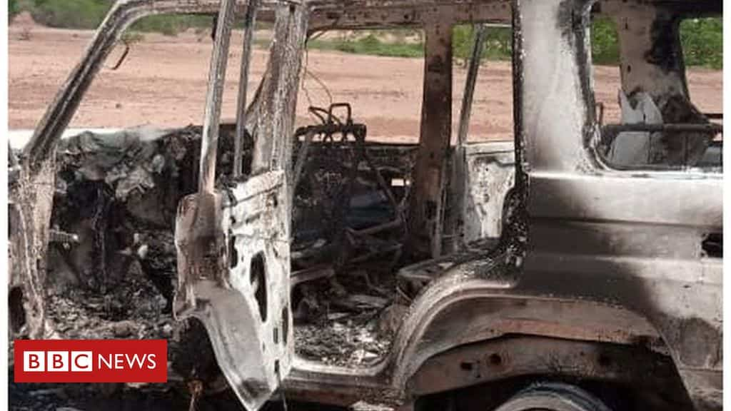 niger-attack:-french-aid-workers-among-eight-killed-by-gunmen
