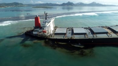 Photo of Mauritius oil spill: Locals scramble to contain environmental damage