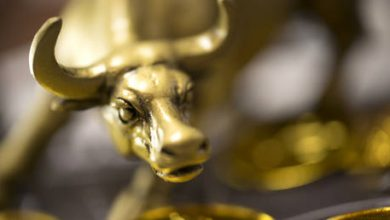 Photo of 'This is the most unloved gold bull market I've ever seen' – Peter Schiff