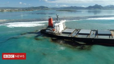Photo of Why the Mauritius oil spill is so serious