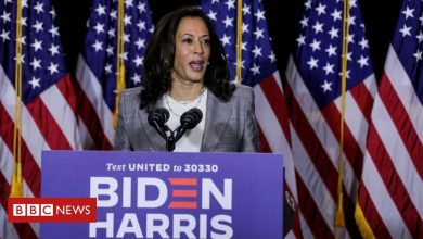 Photo of Trump stokes 'birther' theory about Kamala Harris
