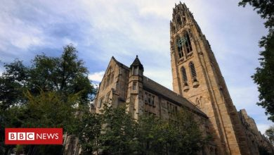 Photo of Department of Justice says Yale discriminates against whites and Asians