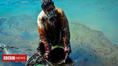 Photo of Mauritius oil spill: Are major incidents less frequent?