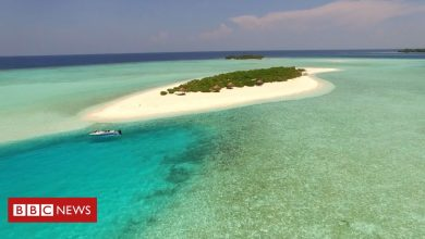 Photo of Campaigners win fight to stop Maldives islands becoming luxury resort