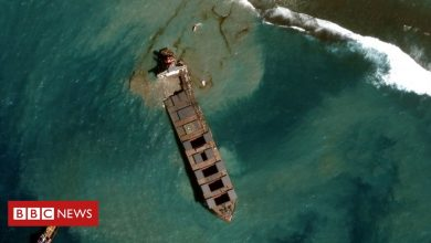Photo of Mauritius oil spill: Satellite images show removal operation