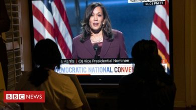 Photo of Kamala Harris speech: What was the verdict on how she did?