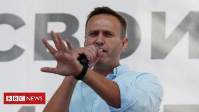 Photo of Alexei Navalny: Doctors say Putin critic can't be moved to Germany