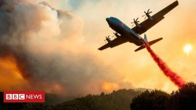 Photo of California fires: Governor asks Australia for help