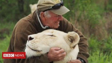 Photo of West Mathewson: South African conservationist killed by white lions