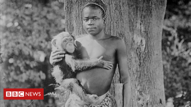 Photo of Caged Congolese teen: Why a zoo took 114 years to apologise
