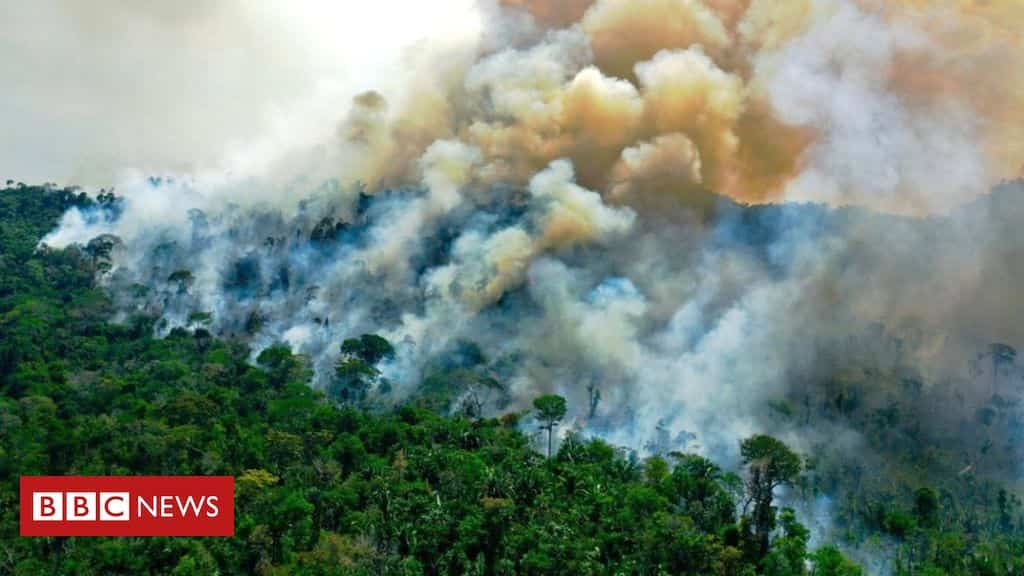 amazon-fires:-are-they-worse-this-year-than-before?