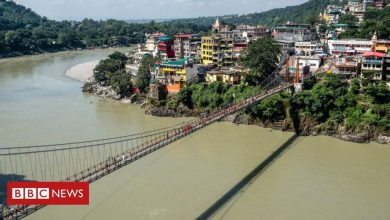 Photo of Woman arrested for naked video on India's Lakshman Jhula bridge
