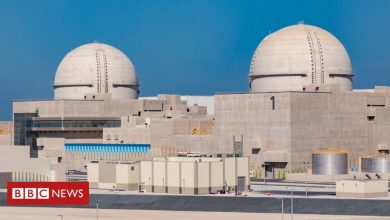 Photo of Barakah: UAE starts up Arab world's first nuclear plant