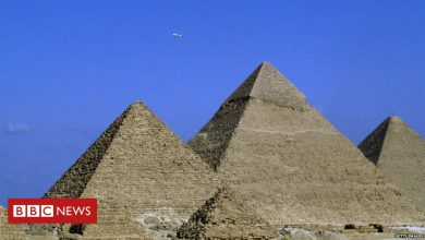 Photo of Egypt tells Elon Musk its pyramids were not built by aliens