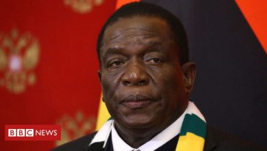 Photo of Zimbabwe's Mnangagwa vows to 'flush out' opponents