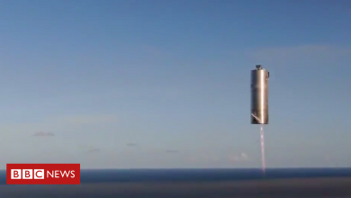 Photo of SpaceX: Musk's 'Mars ship' prototype aces 150m test flight