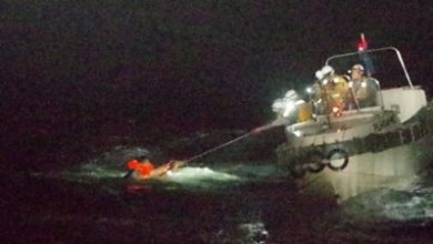 Photo of Seaman found alive after capsize of cargo ship in typhoon