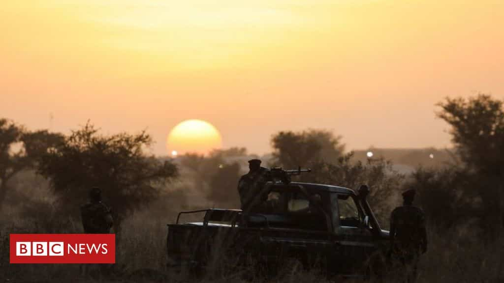 niger-mass-graves:-army-accused-of-executing-over-70-civilians