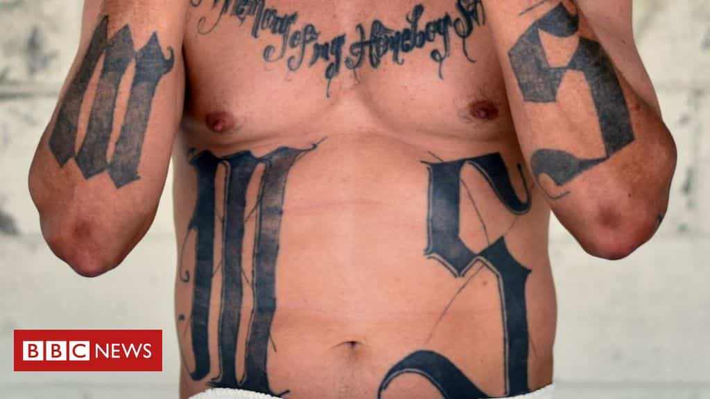 el-salvador-granted-favours-to-jailed-gang-leaders,-report-says