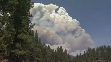 Photo of Creek Fire: Helicopters rescue dozens of trapped California campers