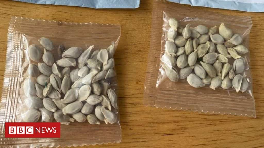 mystery-seeds:-amazon-bans-foreign-plant-sales-in-us
