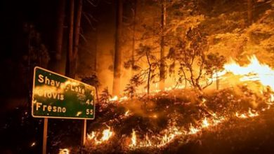 Photo of California wildfires: Fires rage across thousands of acres