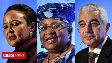 Photo of World Trade Organization: How an African head could make a difference