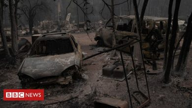 Photo of US wildfires leave dozens missing in Oregon, state governor says
