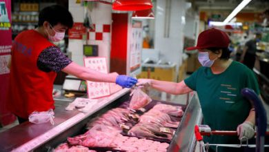 Photo of China opens its market to more Russian meat suppliers