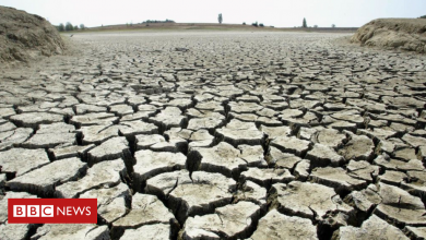 Photo of Climate Week: World split on urgency of tackling rising temperatures, poll suggests