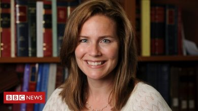 Photo of Amy Coney Barrett 'to be picked by Trump for Supreme Court'