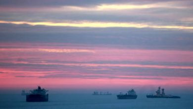 Photo of Russian Arctic Sea route shipping to top 32 million tons this year – Rosatom