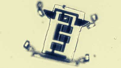 scientists-create-a-microscopic-robot-that-'walks'