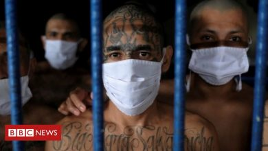 Photo of Did El Salvador's government make a deal with gangs?