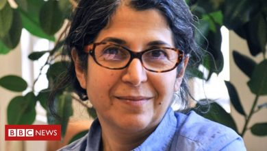 Photo of Fariba Adelkhah: French-Iranian academic temporarily released in Iran