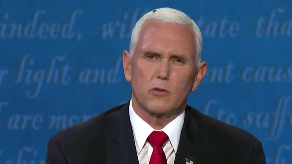 fly-generates-most-buzz-from-us-vp-debate