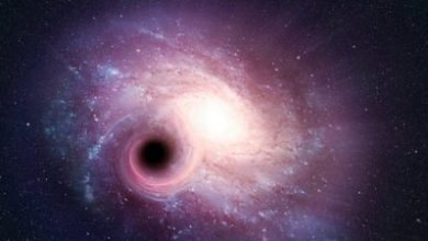 Photo of Glass ceilings and black holes: How history was made in the 2020 science Nobels