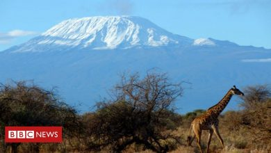 Photo of Kilimanjaro: Fire breaks out on Africa's tallest mountain