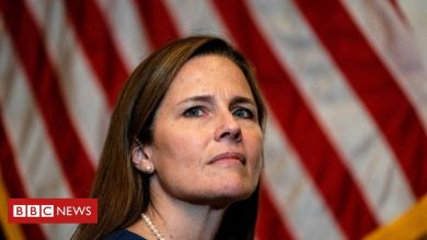 Photo of Amy Coney Barrett: Trump's Supreme Court nominee vows to 'apply law as written'