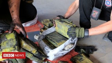 Photo of Cocaine worth $500m found hidden in charcoal shipment