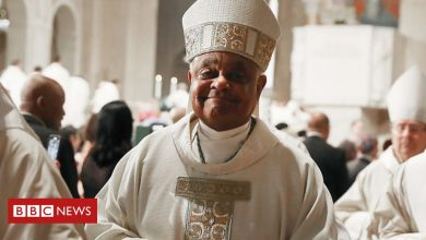 Photo of Wilton Gregory: Pope Francis names first African-American cardinal