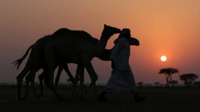 Photo of Economies of Mideast & Central Asia may not fully recover from coronavirus for at least a decade – IMF