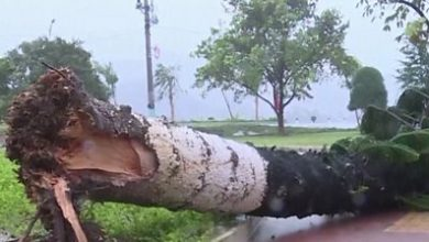 Photo of Typhoon Molave batters Vietnamese coast