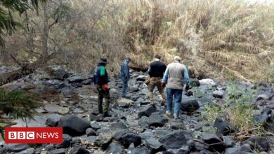 Photo of Mexico: At least 59 bodies found in unmarked graves