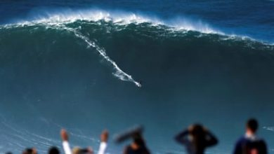 Photo of ICYMI: Big wave surfing to socially-distanced theatre