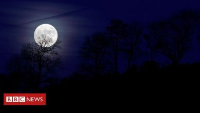 Photo of Rare 'blue moon' to enchant Halloween stargazers