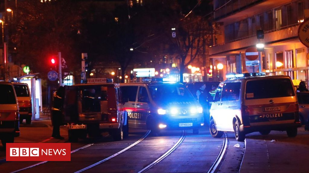 vienna-shooting:-gunmen-hunted-after-deadly-'terror'-attack